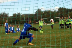 1. SC Naumburg-1.FCW-UMW-F. Leißling 16.09.2017 3.9